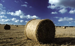 Ostbelgien - Landwirtschaft